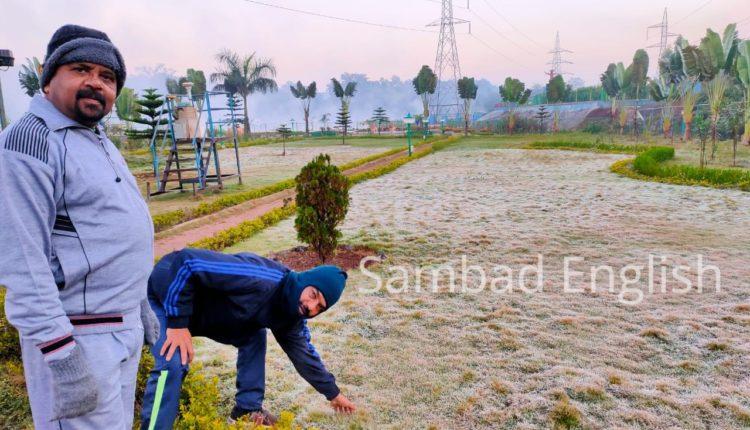 mild frost (1)