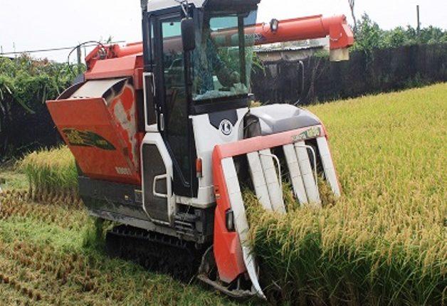paddy-cutting machine