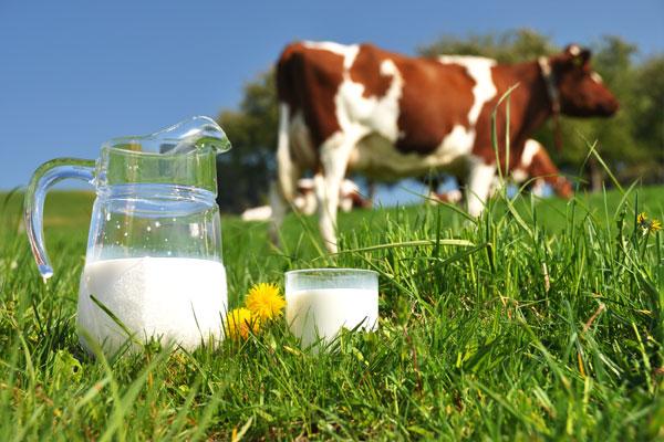 Dairy-milk-intake