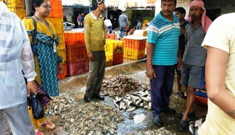 unit 4 fish market