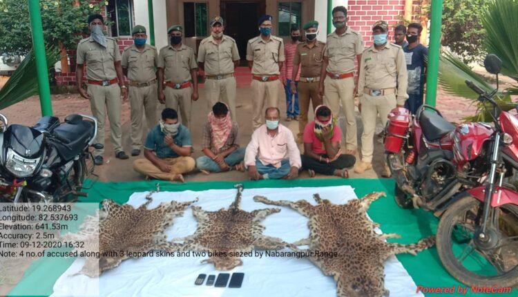 leopard skin smuggling_nabarangpur