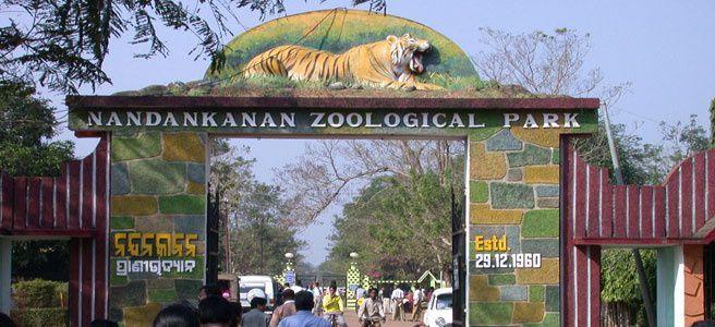nandankanan zoo