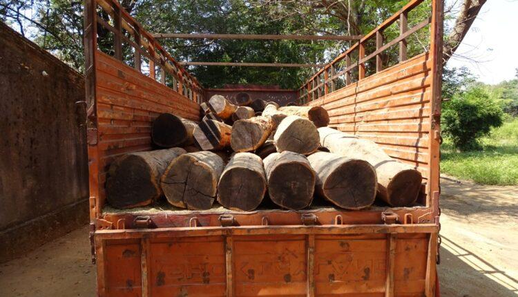 Timber worth lakhs seized