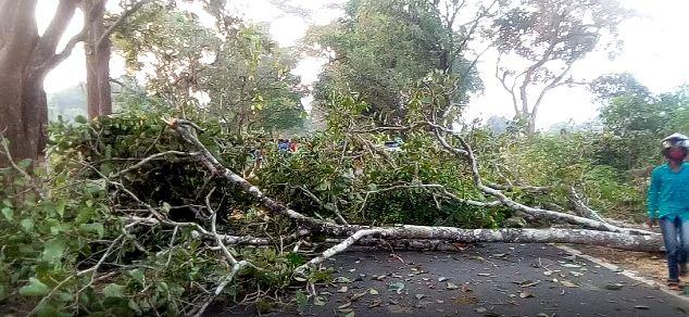 maoists block road