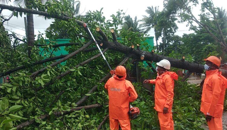 cyclone restoration