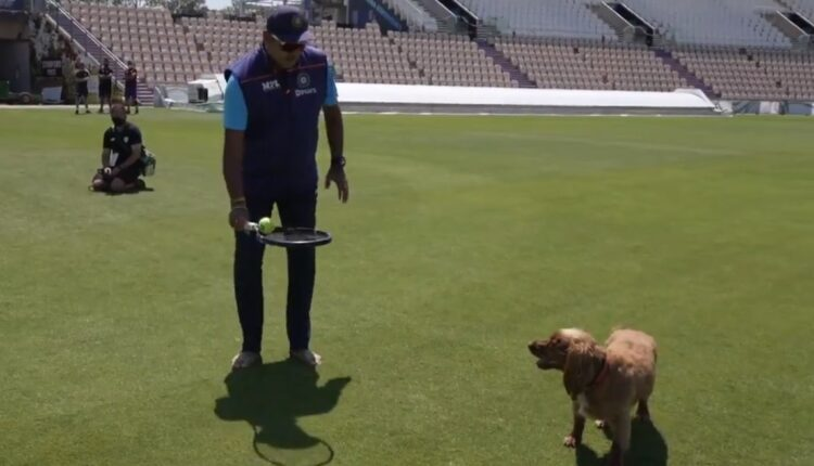 Shastri gives 'fielding classes' to Southampton curator's dog