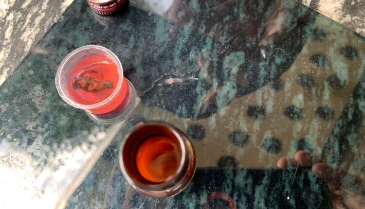 centipede in Niramaya medicine