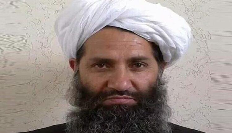 taliban head
